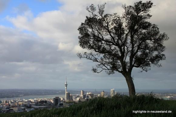 Auckland vom Mt Eden aus gesehen