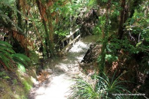 Great Walk: im Abel Tasman NP