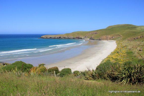 Bucht in der Otago Halbinsel